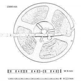 Tira Flexible Interior 20w*5m 1500lm IP20 12V - Imagen 2